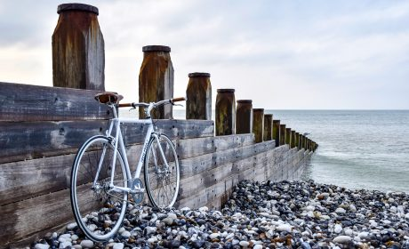 Moving Day: A Brighton guide for parents